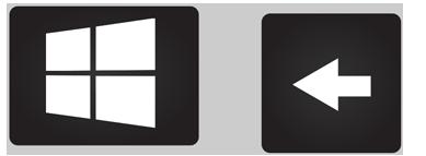 Windows Key & Arrow (left)